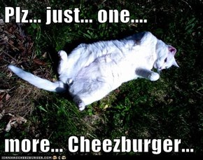 Plz... just... one....  more... Cheezburger...