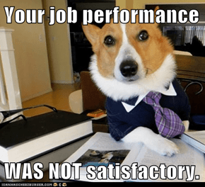 Your job performance  WAS NOT satisfactory.