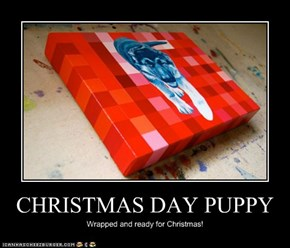 CHRISTMAS DAY PUPPY