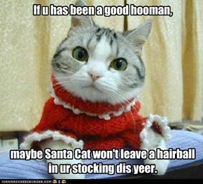 If u has been a good hooman,           maybe Santa Cat won't leave a hairball in ur stocking dis yeer.