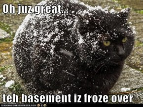 Oh juz great...  teh basement iz froze over