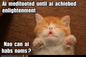Ai  meditooted  until  ai  achiebed  enlightenment .