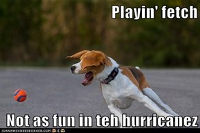 Playin' fetch   Not as fun in teh hurricanez