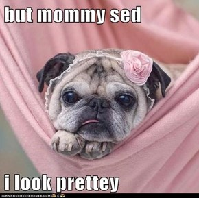 but mommy sed   i look prettey