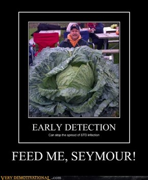 FEED ME, SEYMOUR!