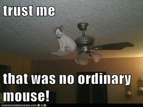 trust me  that was no ordinary mouse!