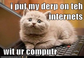 i put my derp on teh internets   wit ur computr