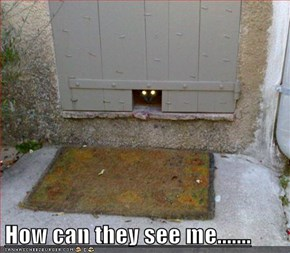 How can they see me.......