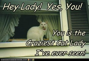 Hey Lady!  Yes, You!