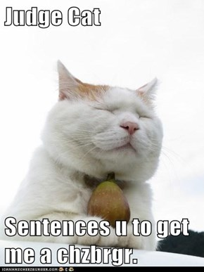 Judge Cat  Sentences u to get me a chzbrgr.