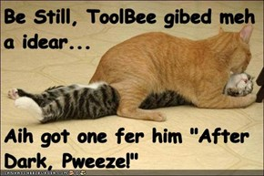 "Be Still, ToolBee gibed meh a idear...  Aih got one fer him ""After Dark, Pweeze!"""