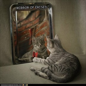 MIRROR OF ERISED