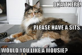 OHAITHERE! PLEASE HAVE A SITS. WOULD YOU LIKE A MOUSIE?