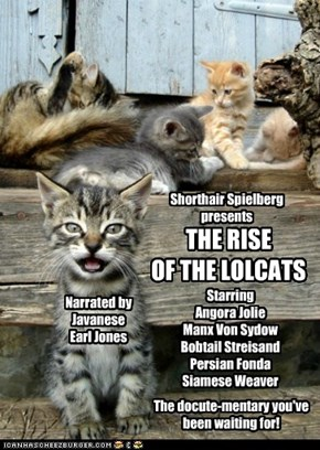 Check your local listings for THE RISE OF THE LOLCATS