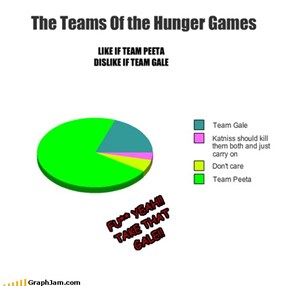 The Teams Of the Hunger Games
