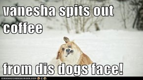 vanesha spits out coffee  from dis dogs face!
