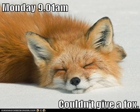 Monday 9.01am  Couldn't give a fox.