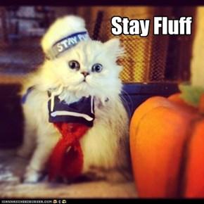 Stay Fluff