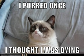 I PURRED ONCE  I THOUGHT I WAS DYING