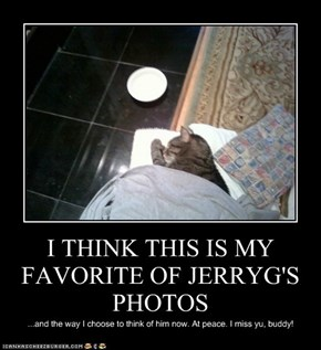 I THINK THIS IS MY FAVORITE OF JERRYG'S PHOTOS