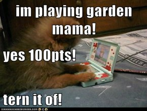 im playing garden mama! yes 100pts! tern it of!