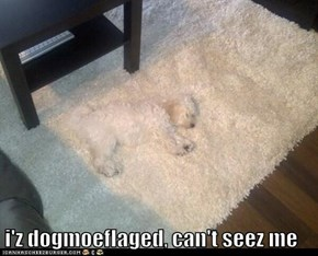 i'z dogmoeflaged, can't seez me
