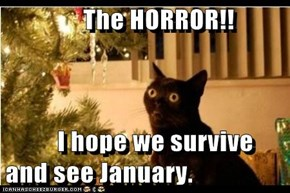 The HORROR!!            I hope we survive           and see January.