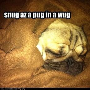 snug az a pug in a wug