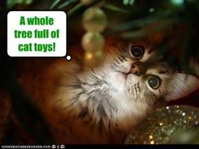Christmas wish fulfilled
