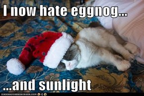 I now hate eggnog...  ...and sunlight