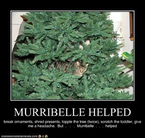 MURRIBELLE HELPED