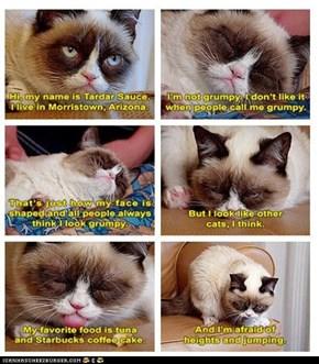 Grumpy Cat Speak With So Many Feels