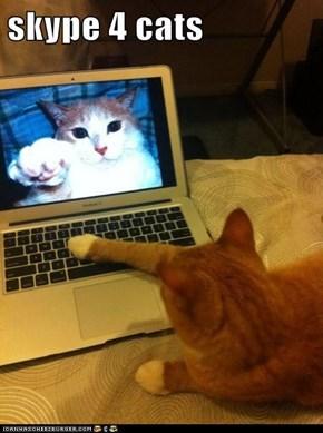 skype 4 cats