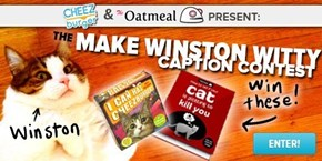 Make Winston Witty: Caption a New Picture of Winston for Your Chance to Win Awesome Prizes!