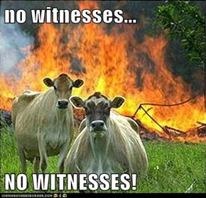 no witnesses...  NO WITNESSES!