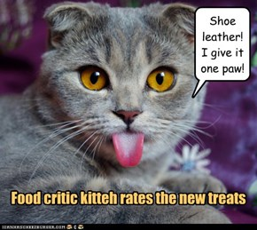 Food critic kitteh rates the new treats