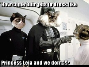 How come Bub gets to dress like   Princess Leia and we don't??