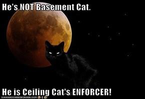 He's NOT Basement Cat.  He is Ceiling Cat's ENFORCER!