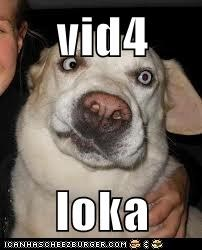vid4  loka