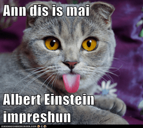 Ann dis is mai  Albert Einstein impreshun