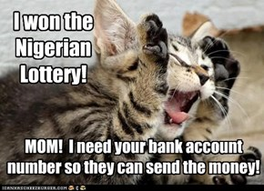 I won the Nigerian Lottery!