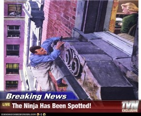 Breaking News - The Ninja Has Been Spotted!