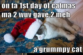 on ta 1st day of catmas ma 2 wuv gave 2 meh   a grummpy cat