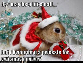 dey may be a bit small....  but i bwought u a pwessie for cwismas anyway!