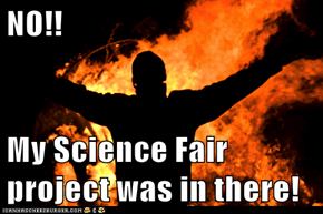 NO!!  My Science Fair project was in there!
