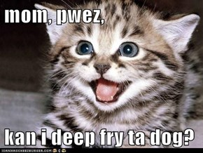 mom, pwez,  kan i deep fry ta dog?