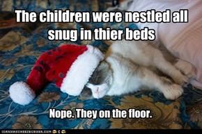 Grumpy Cat's bed now.