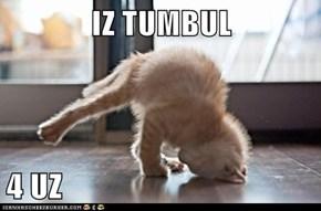 IZ TUMBUL  4 UZ