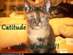 Dat's rite!  I gotz Catitude  wif a capitol C!!