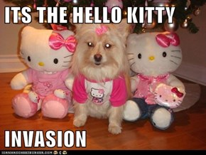ITS THE HELLO KITTY  INVASION